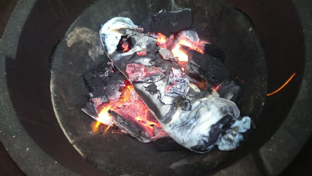 De lomo in de kolen